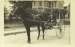 Horse and buggy - Wikipedia