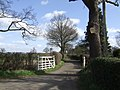 Private road leading to Wood House - geograph.org.uk - 368457.jpg