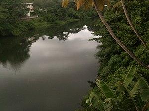 Punalur - Image: Punalur kallada river