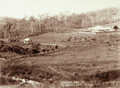 Queensland State Archives 2484 Lofgrens Farm at Mount Crosby c 1898.png
