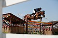 Rêveur de Hurtebise ridden by Kevin Staut at the 2016 Olympic Games in Rio de Janeiro.jpg