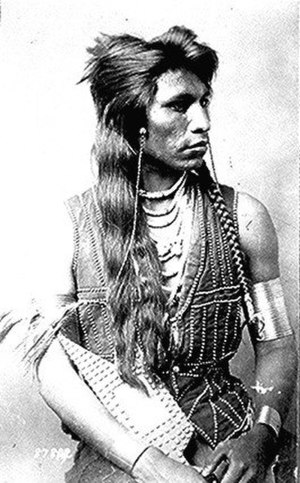 Shoshone - Rabbit-Tail
