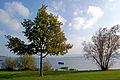 Radolfzell - Blick auf den Bodensee (10278091724).jpg