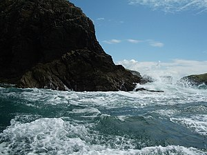 English: Ramsey Island: rough water near Trwyn...