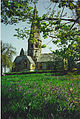 Ranmore Church and Bluebells. - geograph.org.uk - 110897.jpg