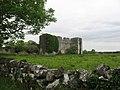 Rathcline Castle, Lanesborough, Co. Longford - geograph.org.uk - 545346.jpg