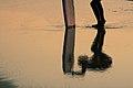 Reflejo en el agua (3771107821).jpg