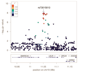 Genome-wide association study - Image: Regional Association Plot