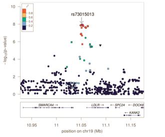Genome-wide association study - Image: Regional Association Plot