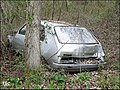 Renault 14 in an French forest... (8581323964).jpg