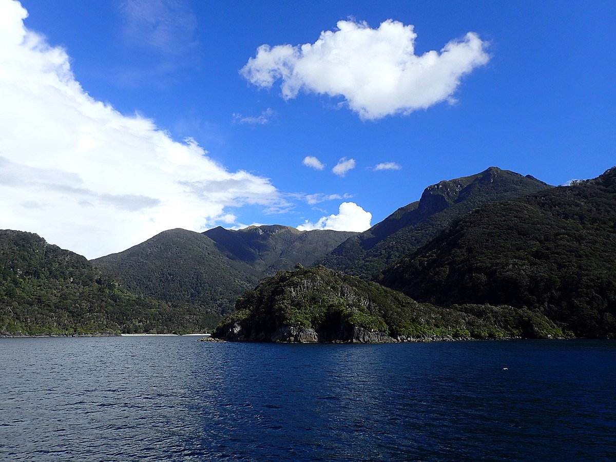 Nowa Zelandia Strzelanina Wikipedia