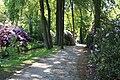 Rhododendronpark Bremen 20090513 016.JPG