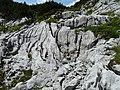 Rinnenkarst forms at Dachstein Plateau 2018.jpg