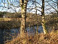 River Ardle - geograph.org.uk - 620561.jpg