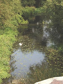 River Colne from Ebury Way, Watford - geograph.org.uk - 44005