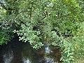 River Conder - geograph.org.uk - 897632.jpg