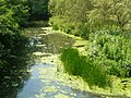 River Eden, Hever, Kent - geograph.org.uk - 1385333.jpg