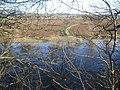 River Severn near Clevelode - geograph.org.uk - 632101.jpg