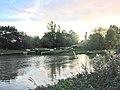 River Soar, Belgrave, Leicester - geograph.org.uk - 70275.jpg