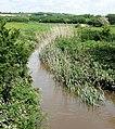 River amble portrait.jpg