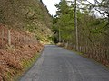 Road below Coed Lan-fraith - geograph.org.uk - 774629.jpg