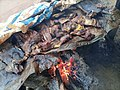 Roasted Meat in Northern Ghana 04.jpg