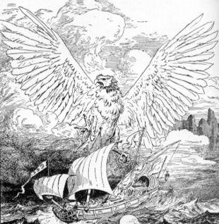 Rokh oiseau de feu dans OISEAUX 310px-Roc8954