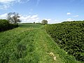 Roe Hill Footpath - geograph.org.uk - 413400.jpg