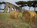 Roma Parco degli Acquedotti.jpg