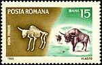 Romania stamp 1966 15b Steppe Wisent.jpg
