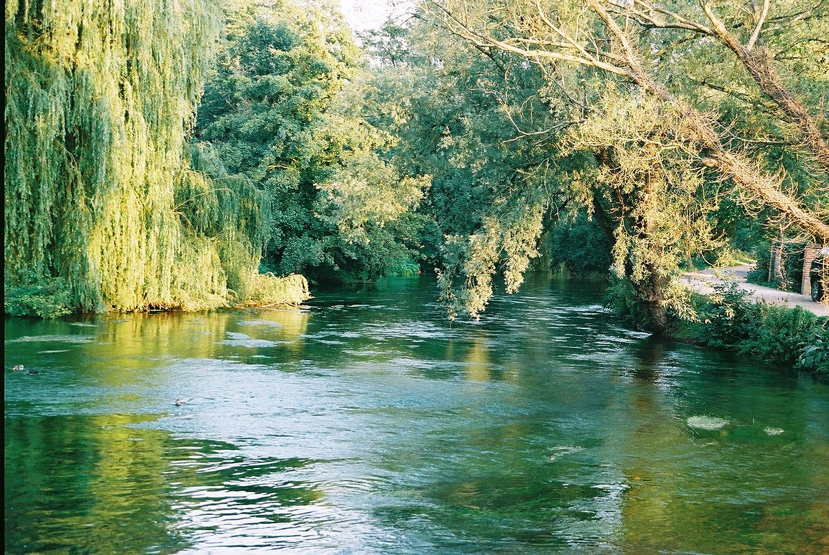 River: River Test