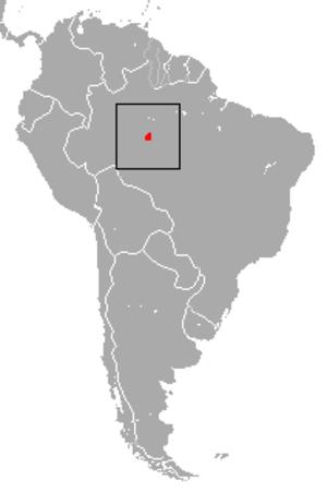 Roosmalens' dwarf marmoset - Image: Roosmalens' Dwarf Marmoset area