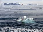 Ross Sea, Summer 2016 01.jpg