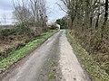 Route Petits Poissons St Jean Veyle 4.jpg