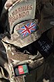 Royal Marine Commando Shoulder Flash and Badges. MOD 45152926.jpg