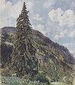 Rudolf von Alt - Die große Fichte in Gastein - 1899.jpeg