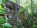 Ruins of Devingrad,Veliko Tarnovo,Bulgaria.jpg