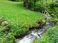 Ruisseau Colantigue Bourg d'Oueil aval (1).jpg