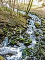 Ruisseau de la source Bergeret. (1).jpg