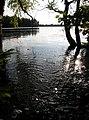 Rutajärvi - panoramio.jpg