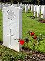Südfriefhof Köln - Commonwealth cemetery - Grabsteine mit Rosen (8884-86).jpg