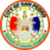 Official seal of San Pedro