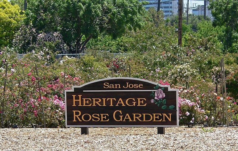 File:San Jose Heritage Rose Garden view 1.jpg