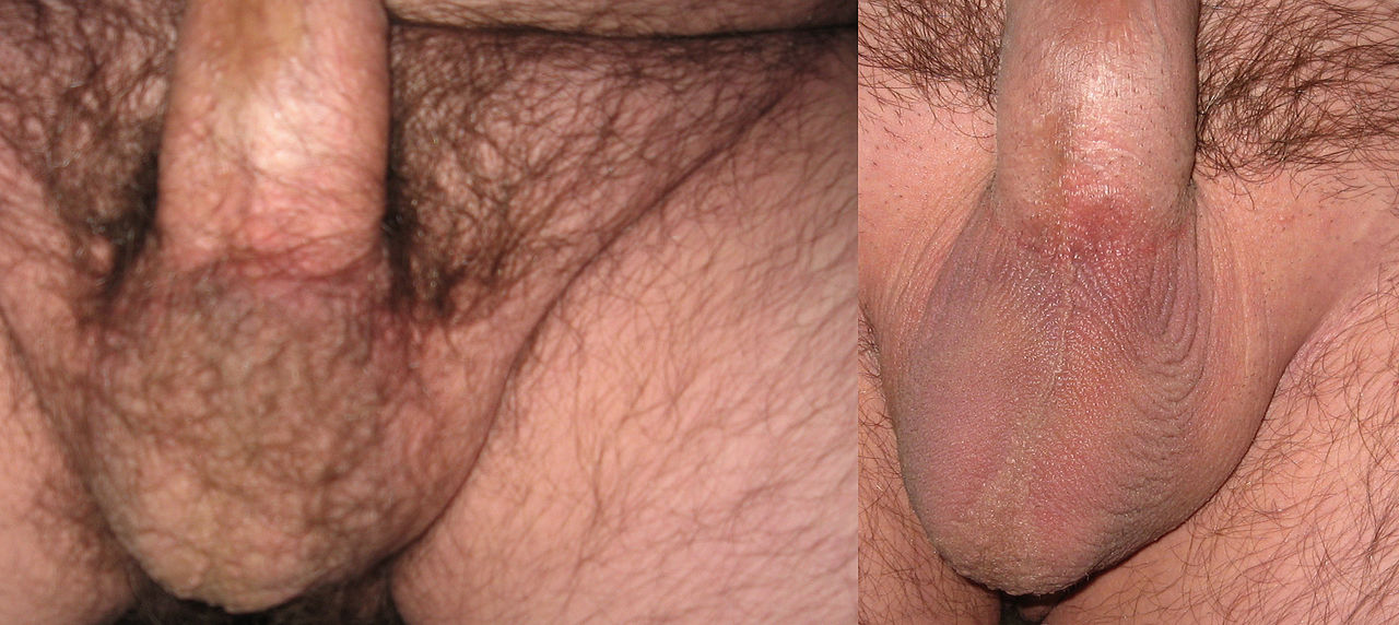 Before and after shave on pussy