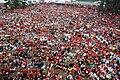Seliger-2007 10000 people.jpg
