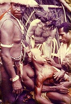 Sepik River initiation PNG 1975.JPG