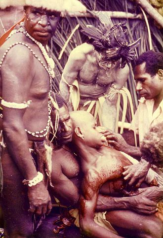 Initiation - Image: Sepik River initiation PNG 1975