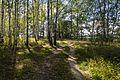 Shilovsky District, Ryazan Oblast, Russia - panoramio (13).jpg