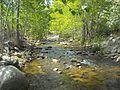 Shingle Creek (British Columbia)3.jpg