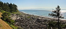 Shoreline at Fort Ebey State Park within U.S. Ebey's Landing National Historical Reserve on Whidbey Island
